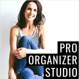 Podcast guest appearances: Pro Organizer Studio Episode 54: The Enneagram and Your Pro Organizing Business